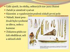 Mladší doba kamenná Doba bronzová Doba železná - ppt stáhnout Bronze