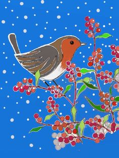 Robin with blue background