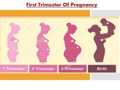 Get tips on #FirstTrimesterOfPregnancy and many more about Pregnancy care.