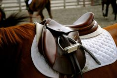 I need a new saddle so bad.☺ SOOOOO PRETTY!!!