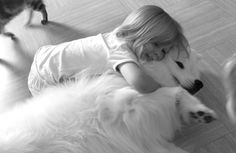 Little girl and her Samoyed