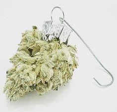 yepthestoner:    Marijuana