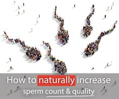 Discover natural ways to improve the health of your sperm. Little Swimmers, Chances Of Getting Pregnant, Male Infertility, Anabolic Steroid, Trying To Conceive, Soy Products, Natural Supplements, How To Stay Healthy, Counting