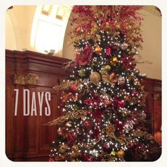 15 Days, 11 hours & 42 minutes until Christmas!!! | Happy happy ...