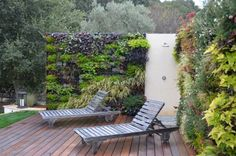 Green Wall | Projects, People & Products