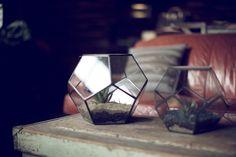 geometric terrariums on coffee table :: Beam & Anchor / portland, or » Dart Photographie.