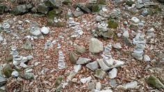 석남사의 작은 돌탑들