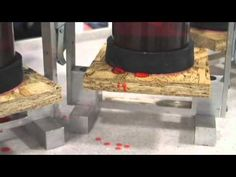 AdvanTech® Flooring Moisture Resistance Demo (+playlist)