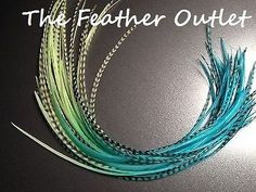 Hey, I found this really awesome Etsy listing at https://www.etsy.com/au/listing/176845712/hair-feathers-10-feather-hair-extensions