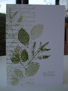 I have two cards today for the  Less is More  challenge, which this week is 'Script'. The card on the left is using French Foliage and E...