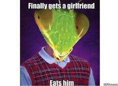 Bad Luck Mantis MEMES