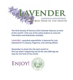 Herb Society of America's July Herb of the Month: Lavender!