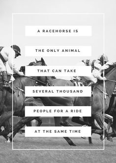 Greyscale Photo Horse Quote Poster