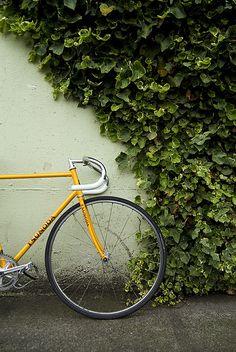 bike ♡