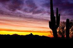 Desert Sunrise 6