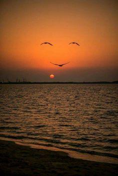 Bonsoir soleil et Bonne nuit nature Natureza Extrema *0*....