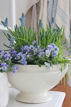 Spring Arrangement ~ Ironstone Bowl