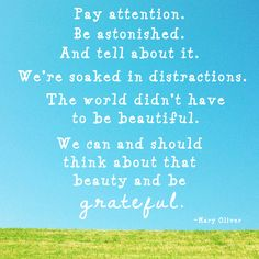 From Mary Oliver:  Pay attention, be astonished, and tell about it.  We're soaked in distractions.  The world didn't have to be beautiful.  We can and should think about that beauty and be grateful.