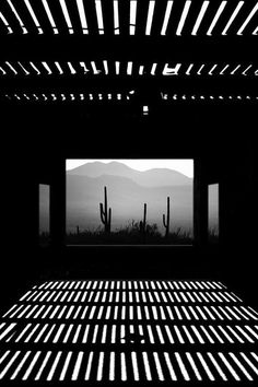 Fantastic light and shadow in this photograph by Boehm Gerhard. Shadow Photography, Street Photography, Art Photography, Desert Photography, Arte Black, Photo B, Foto Art, Black And White Pictures, Light And Shadow