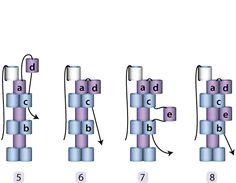 julia s. pretl - tutorials-nice diagrams for odd count peyote
