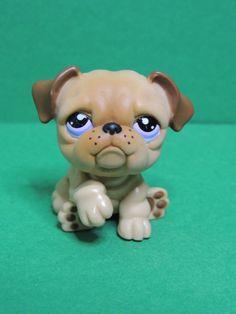 #1342 Chien Dog Brown bulldog purple eyes LPS Littlest Pet Shop Figurine