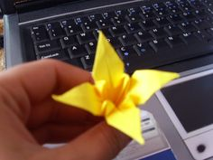 Origami lily from White Collar