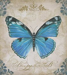 Beautiful Painting - Bleu Papillon-b by Jean Plout