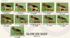 GSD Galerie Der Sieger 2000 - 2014