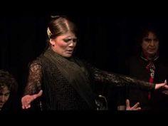 43 Flamenco Tablao Ideas Flamenco Flamenco Dancing Flamenco Dancers