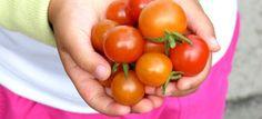 Η εποχή είναι ιδανική για φύτεμα λαχανικών και τα παιδιά θα ενθουσιαστούν παρατηρώντας την ανάπτυξή τους. Δεν ξέρετε πώς να το κάνετε;