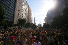 fantasias-carnaval-de-rua-rio-de-janeiro-boi-tolo-4220