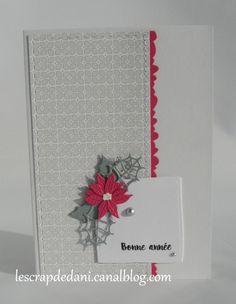 dani carte combo rose f-gris-blanc7