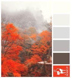 Japanese Mist - Orange, Grey, Brown - Designcat Colour Inspiration Pallet
