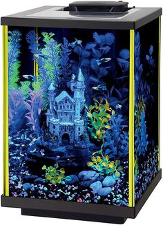 5 Gallon Glass Aquarium with green fluorescent silicone. Black background highlights fish while hiding power cords. Includes: multi-colored gravel, two artificial plants, and fish food. 5 Gallon Aquarium, 10 Gallon Fish Tank, Aquarium Kit, Glass Aquarium, Aquarium Design, Aquarium Fish Tank, Planted Aquarium, Fish Tanks, Aquarium Ideas