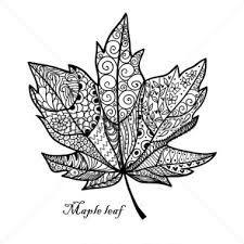 Image result for maple leaf outline