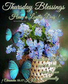Thursday Blessings Have A Lovely Day Religious Quote Good Morning Happy Thursday, Happy Thursday Quotes, Good Morning Thursday, Thankful Thursday, Good Morning Greetings, Good Morning Good Night, Good Morning Wishes, December Quotes, Good Morning God Quotes