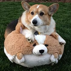 """""""This looks nothing like me."""""""