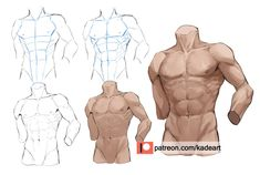 Body Reference Drawing, Drawing Reference Poses, Drawing Abs, Human Anatomy Drawing, Anatomy Art, Digital Painting Tutorials, Digital Art Tutorial, How To Draw Abs, Body Drawing Tutorial