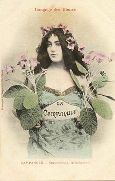 1000 images about jardinage langage des fleurs on pinterest language of flowers flower - Langage des fleurs amitie ...