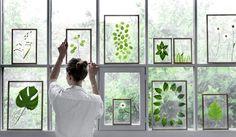 Deze week laat Vera van Brainy Days ons zien hoe je botanische lijsten combineert met andere prints en kaarten. Zo ben je helemaal klaar voor de lente!