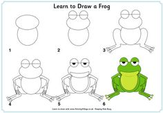 Learn to draw a frog