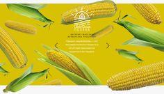 다음 @Behance 프로젝트 확인: \u201cWeb design and corporate identity\u201d https://www.behance.net/gallery/38231651/Web-design-and-corporate-identity