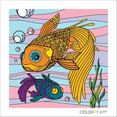 Two fish in one sea
