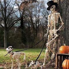 halloween store boston rd springfield ma