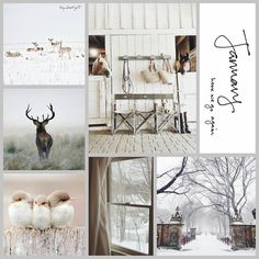 Hello January, January 2016, Collages, Photo Grid, Bujo, Winter Love, Winter Photos, Colour Board, Winter Christmas