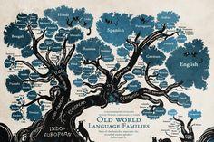 lingue 1