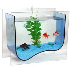 Cute little fishes in adorable aquarium. I enjoy it a lot! <3  More: http://urzadzone.pl/akwarium-dom-dla-rybek-i-ozdoba-wnetrza-galeria,artykul.html?material_id=4fab8ea2fbaeddde35000000
