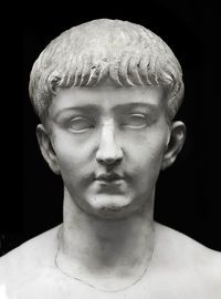 Tiberius Claudius Caesar Britannicus (11 February AD 41 — 11 February AD 55) was the son of the Roman emperor Claudius and his third wife Valeria Messalina. He became the heir-designate of the empire at his birth, less than a month into his father's reign. He was still a young boy at the time of his mother's downfall and Claudius' marriage to Agrippina the Younger. This allowed Agrippina's older son Nero to eclipse him in the public's mind. He lived only months into his stepbrother Nero's…
