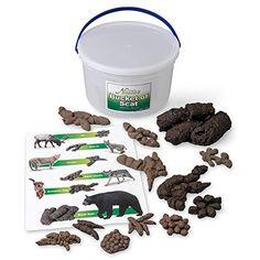Nasco Sb49923 Life Form Replica, Bucket Of Scat, 2015 Amazon Top Rated Model Animals #BISS