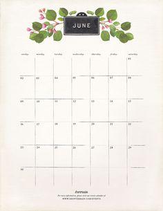 June in Bloom in The BULLETIN at Terrain